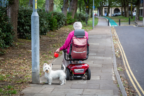 old woman driving mobility scooter while walking white dog