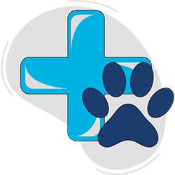Blue Badge Insurance Get Treatment