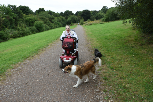woman on mobility scooter with dogs